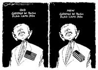 Bush-Surge